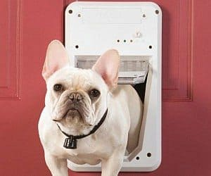 smart key pet door