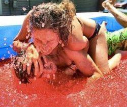 bulk jello wrestling kit
