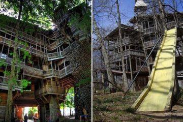 World Biggest treehouses
