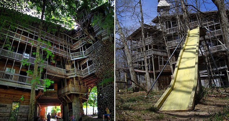 the worlds biggest treehouse
