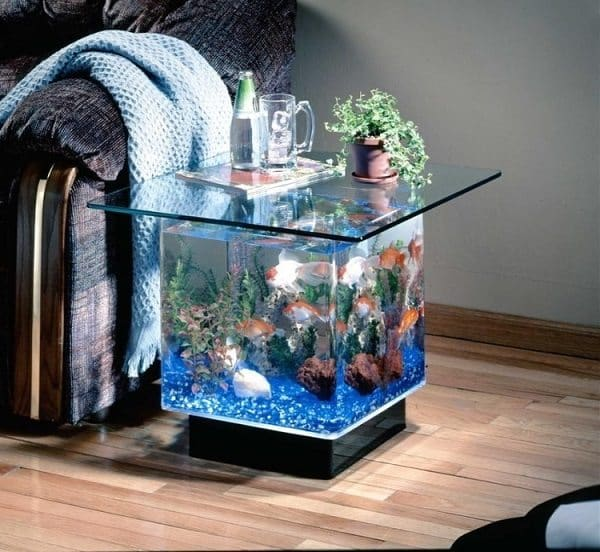 Weird And Wonderful Aquariums