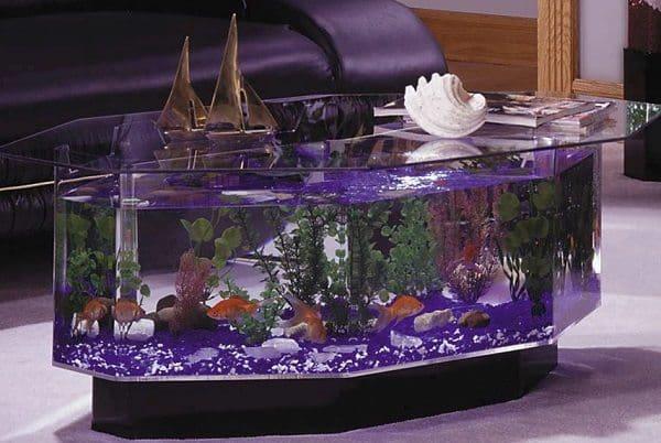 Lovely Aquarium Table