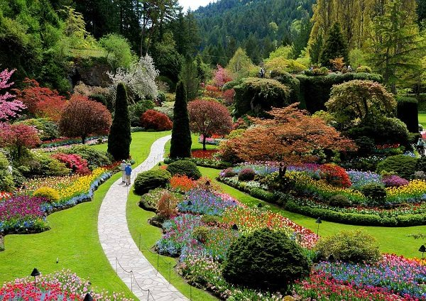 Breathtakingly beautiful gardens - Best time to visit butchart gardens ...