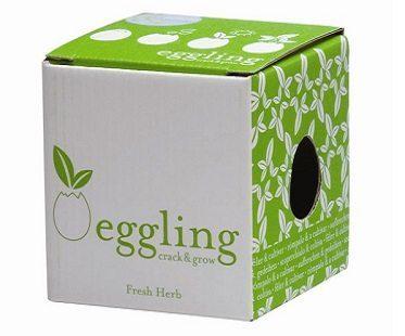 crack and grow basil egg box