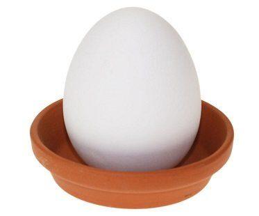 crack and grow basil egg whole