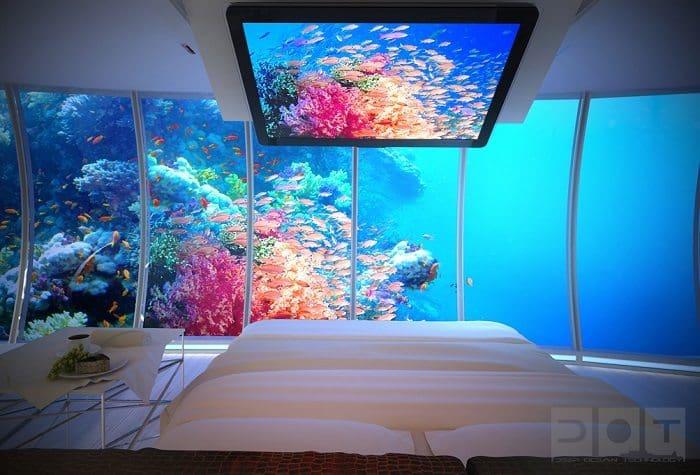 discus bedroom2