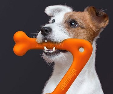 Dog Boomerang Toy