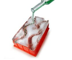 ice luge mold