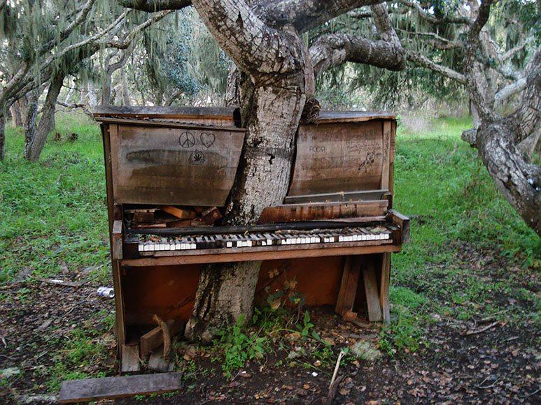 piano-tree
