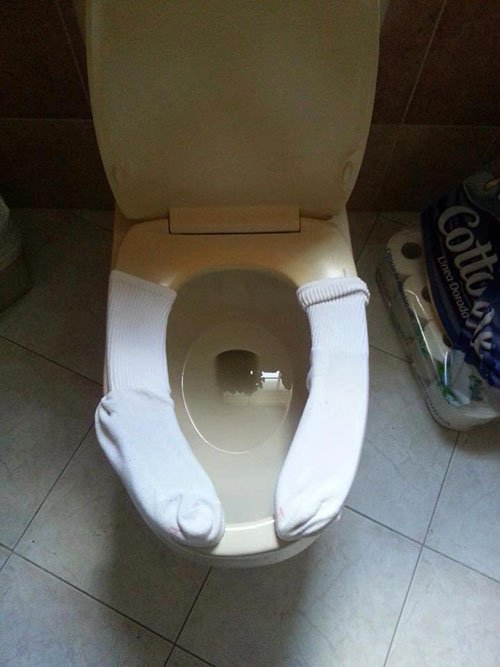 socks on toilet seat
