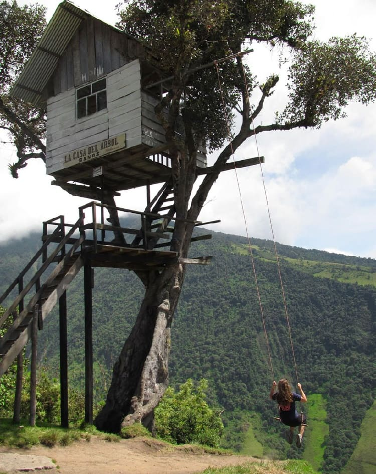 swing tree house