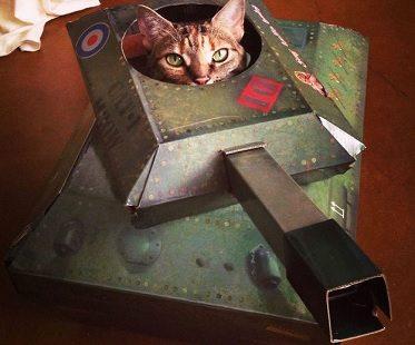 tank cat playhouse