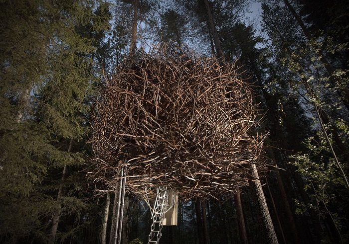 the birds nest treehouse