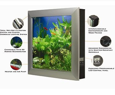 wall-mounted aquarium descriptions