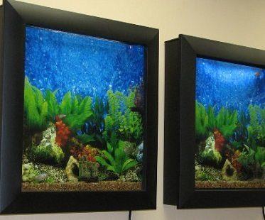 wall-mounted aquarium wall