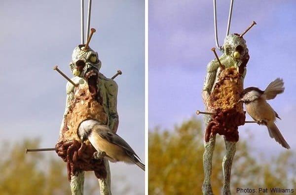 zombie bird feeder