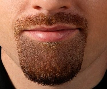 Goatee Shaving Template beard