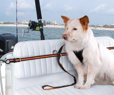 Pet Safety Harness boat