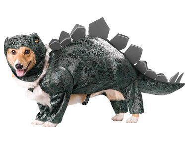 Stegosaurus Dog Costume small