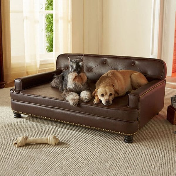 dog-gifts-12