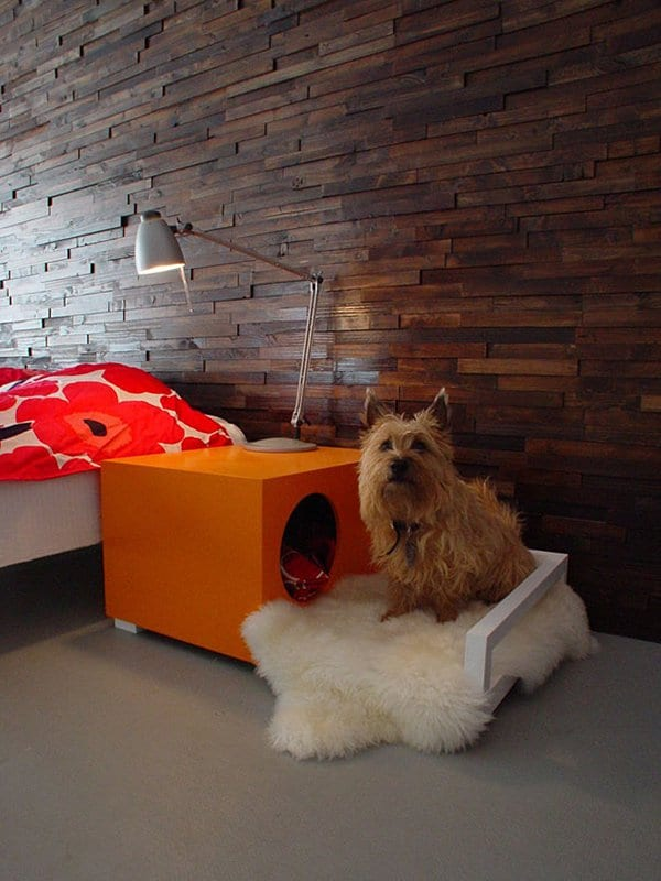 dog-gifts-15