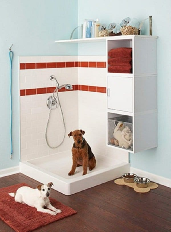 dog shower area