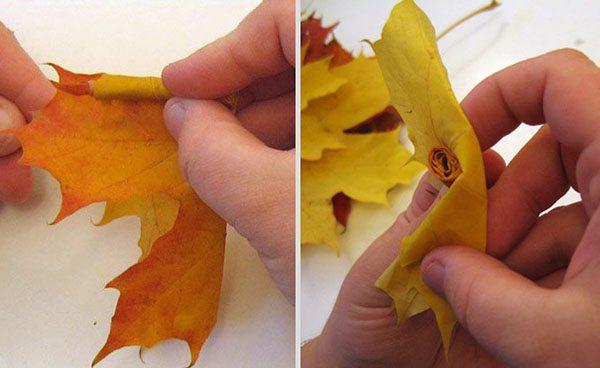 maple leaf roses 1