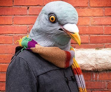 pigeon head mask costume