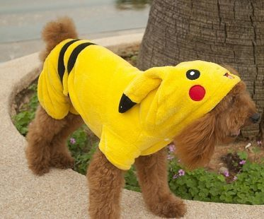 pikachu pet costume
