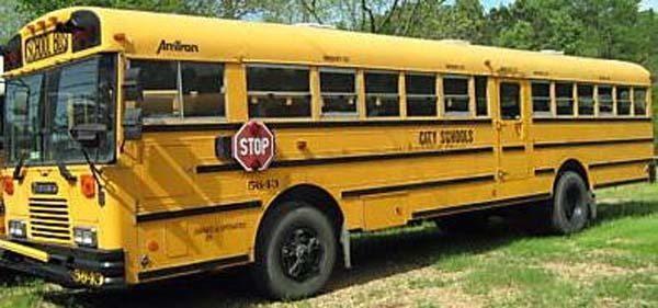 rv bus 1