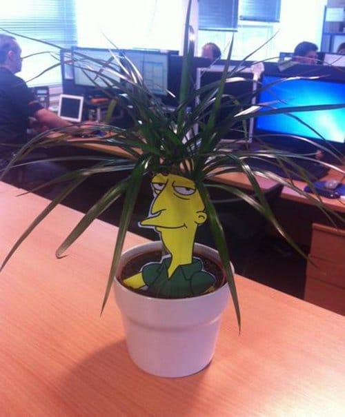 simpsons plant