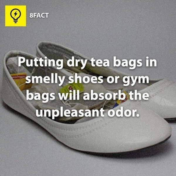 tea bags in shoes