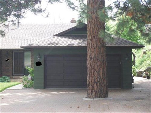 tree-infront-of-garage