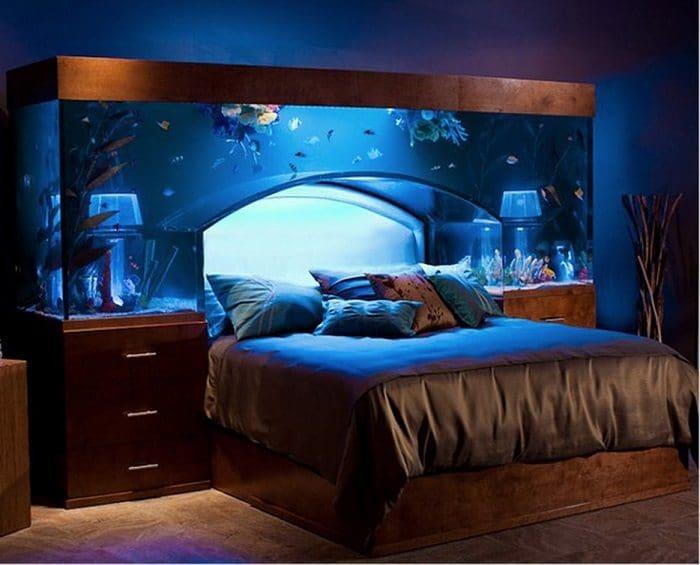 amazing aquarium bed