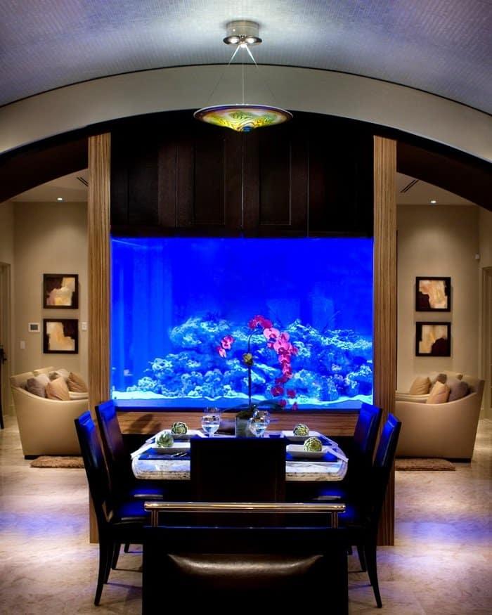 dining room tank