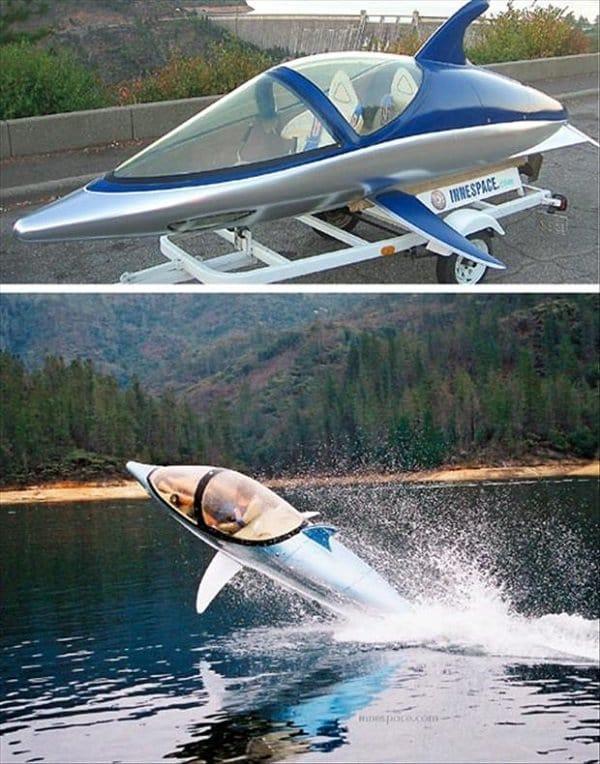 dolphin boat