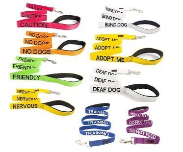 friendly dog leash different