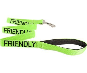 friendly dog leash green