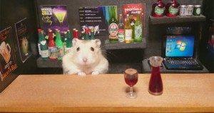 hamster bartender