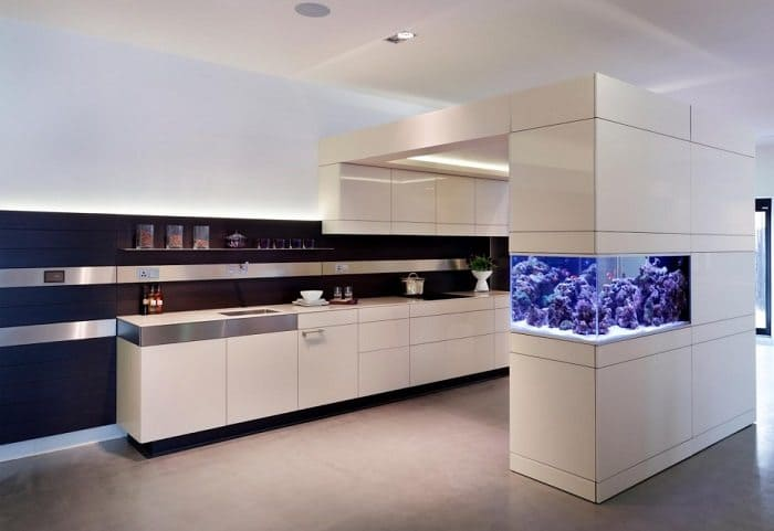 Kitchen Island Fish Tank 25 awesome aquariums you wish you owned