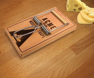 mouse trap cheese