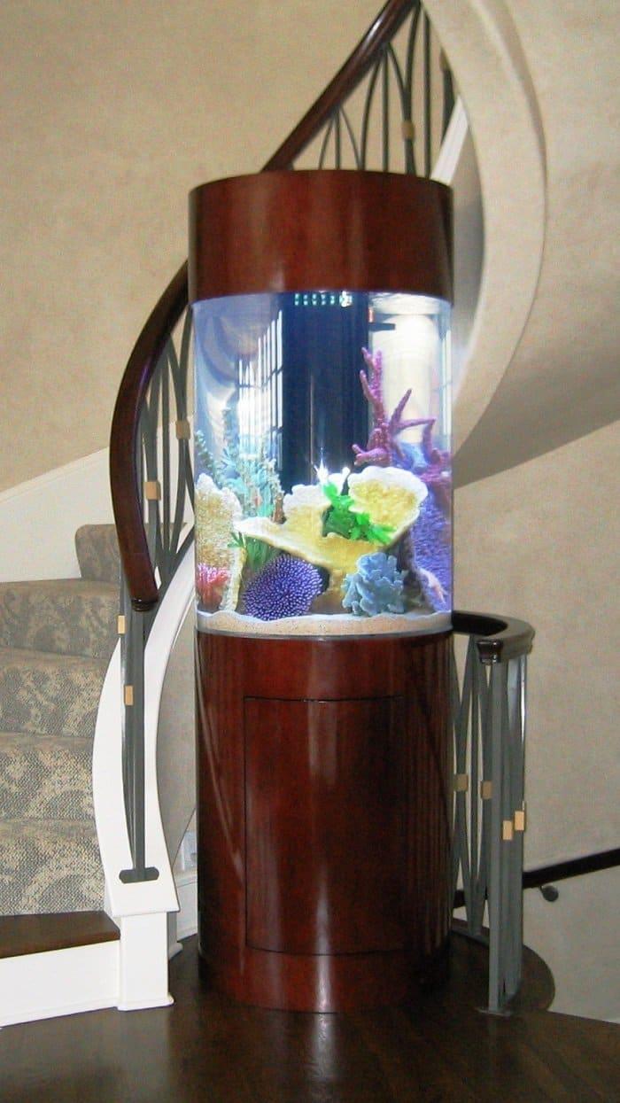 stairs aquarium