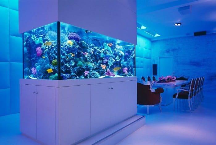 underwater dining room aquarium