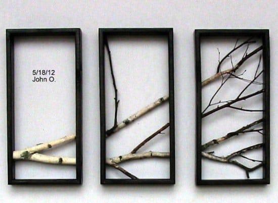 3d-birch