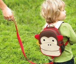Monkey Backpack And Safety Harness