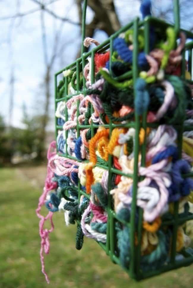 birds-yarn