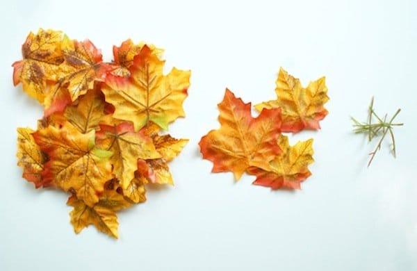 bowls-leaf-second