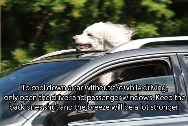 car-How-To-Cool-Down-A-Car-Without-A-C