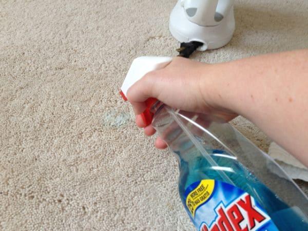 carpet-stains-windex