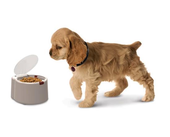 clever-pet-food